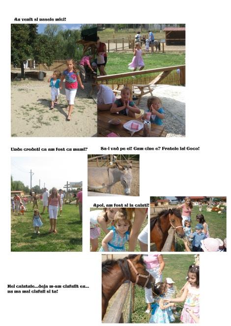 pagina 3 copy
